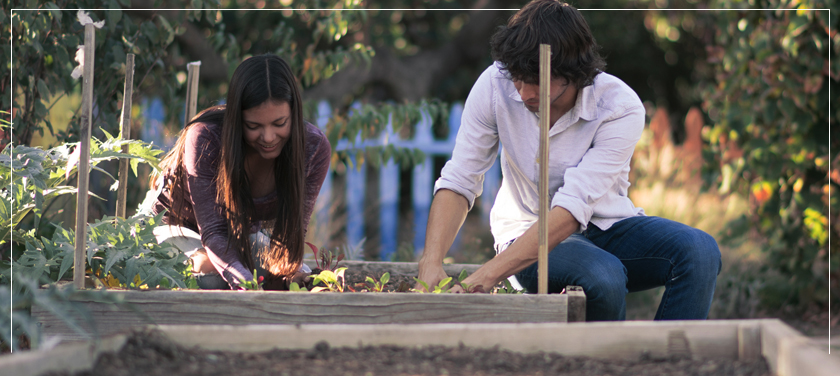 Two Students working in Arboretum Garden